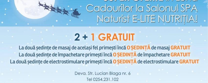 Oferta lunii decembrie la salonul SPA E-lite Nutriția